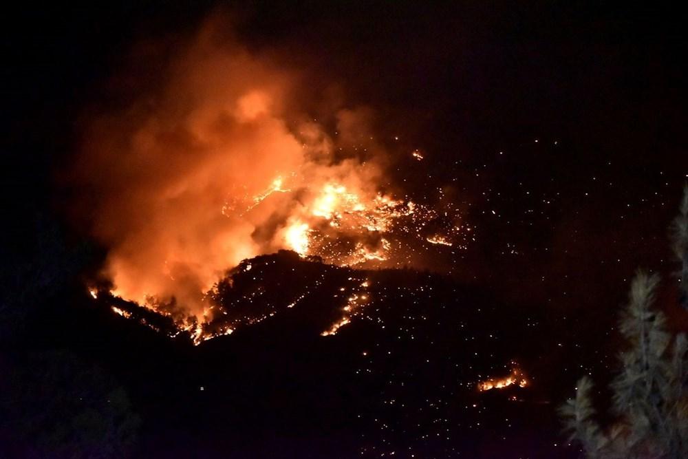 Hatay ve Mersin'de orman yangını - 4