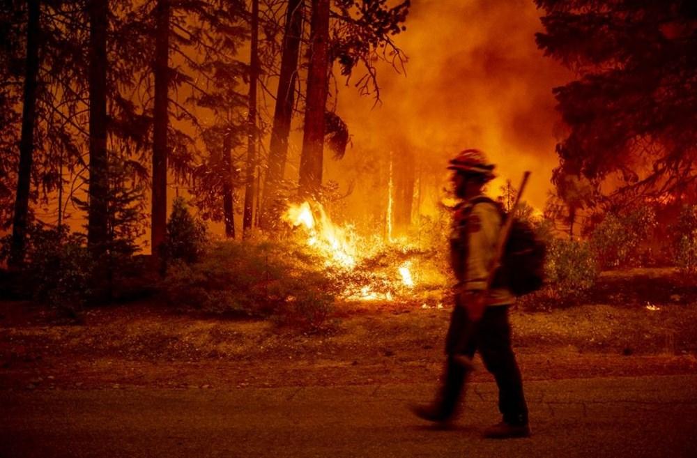 California'da orman yangınları evleri küle çevirdi - 11