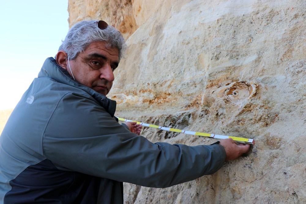 Edirne'de 8 milyon yıllık mamut fosilleri bulundu - 11