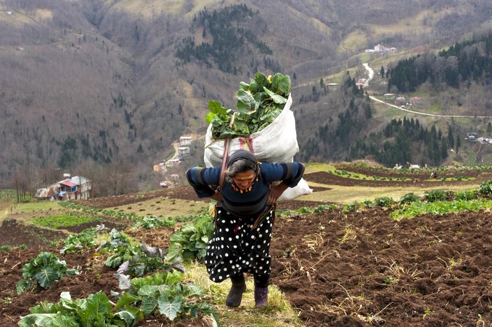 Karadeniz'in çalışkan kadınları: Köy toplansa evde tutamaz - 1