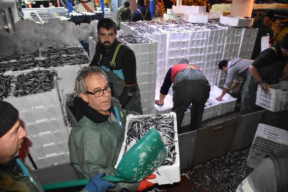 Balıkçılardan hamsi avının serbest olduğu İğneada'ya akın - 13