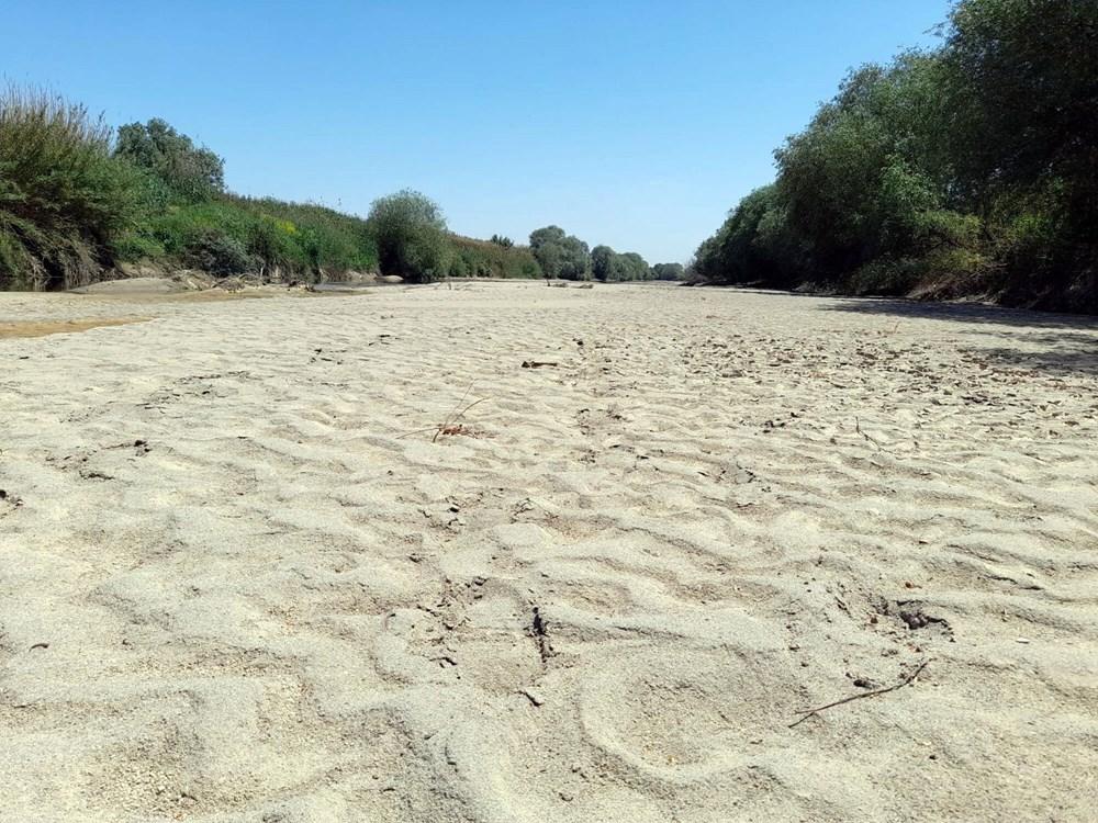 Büyük Menderes kuruyunca çiftçiler yer altı sularına yöneldi - 2