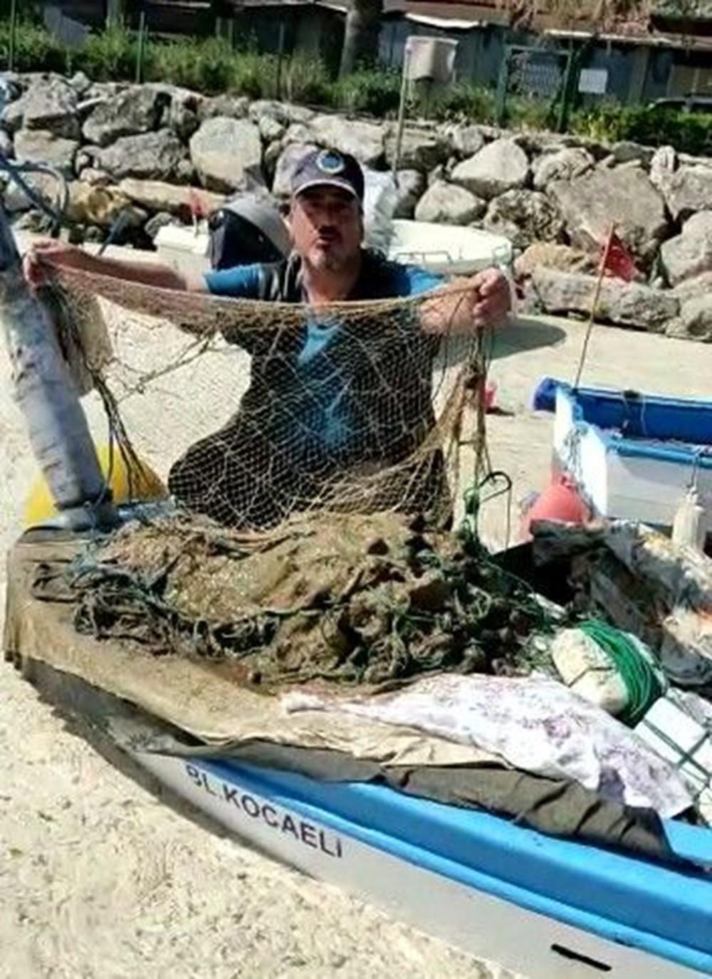 Deniz salyası ağları duman etti: Balıkçılık bitti - 5
