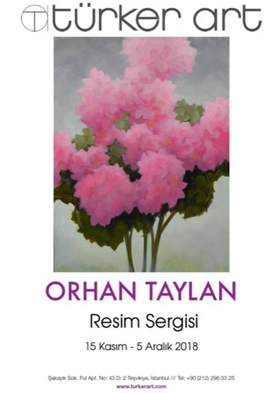 Orhan Taylan sergisi (Türker Art afişi)