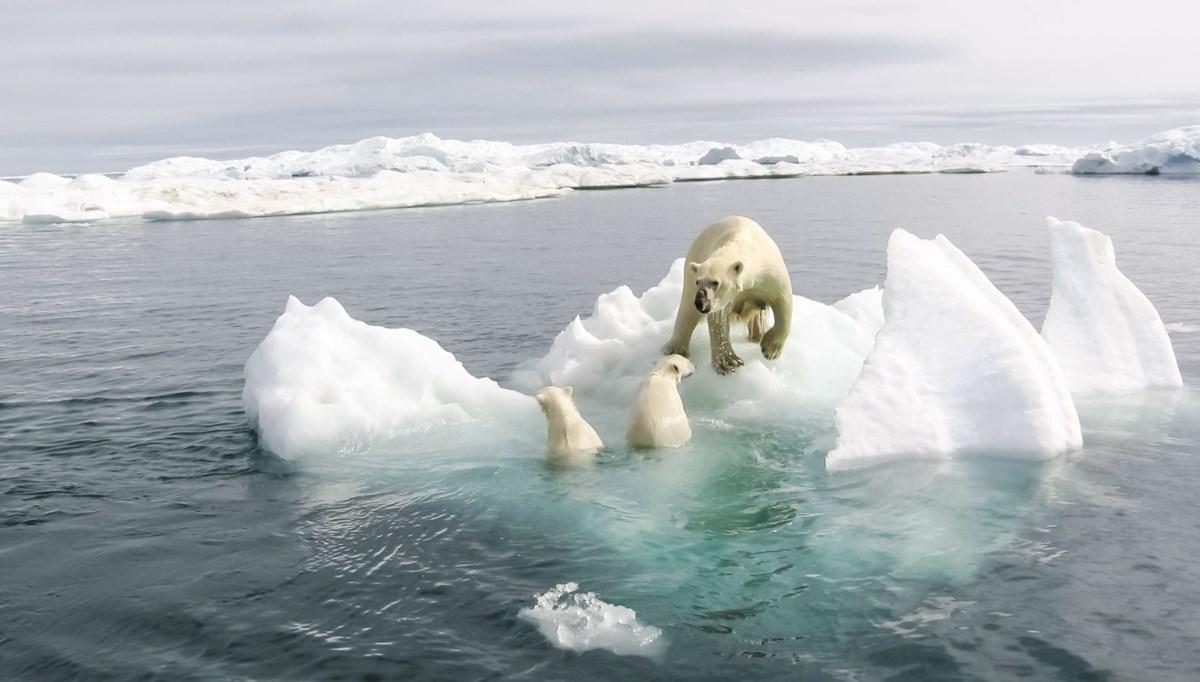 Dünya Meteoroloji Örgütü'nden uyarı: 2025 yılına kadar küresel ısınmada kritik eşik geçilecek