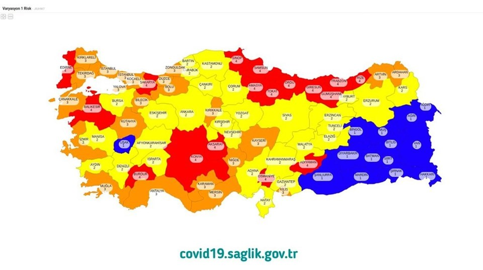 Türkiye'nin renklere göre corona virüs risk haritası
