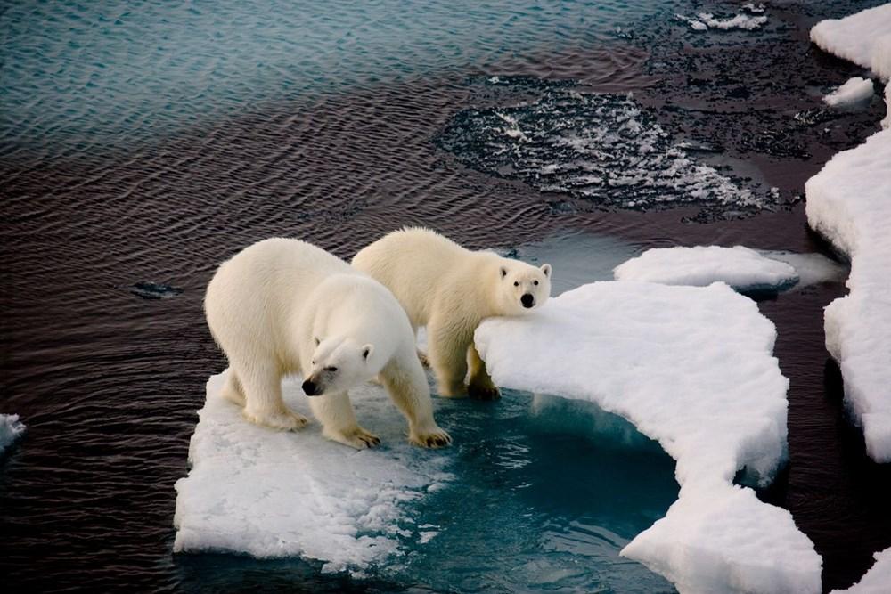 Bilim insanlarından felaket uyarısı: Dünya'nın çekirdeği Kıyamet Günü buzulunu eritiyor - 10