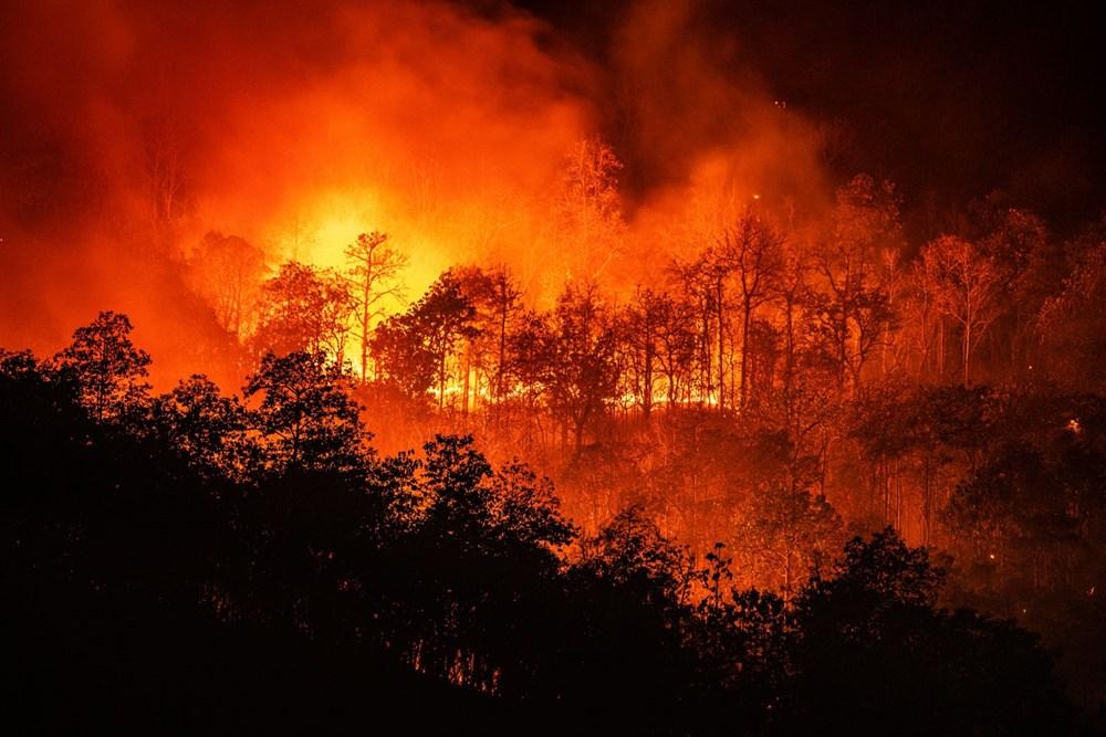 BM uyardı: Son 40 yılda dünyada yaşanan doğal afetlerin sayısı 5 kat arttı - 12