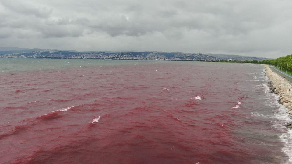 Kocaeli'de Kilez Deresi'ni atık su ile kırmızıya boyayan firmaya ceza - 10