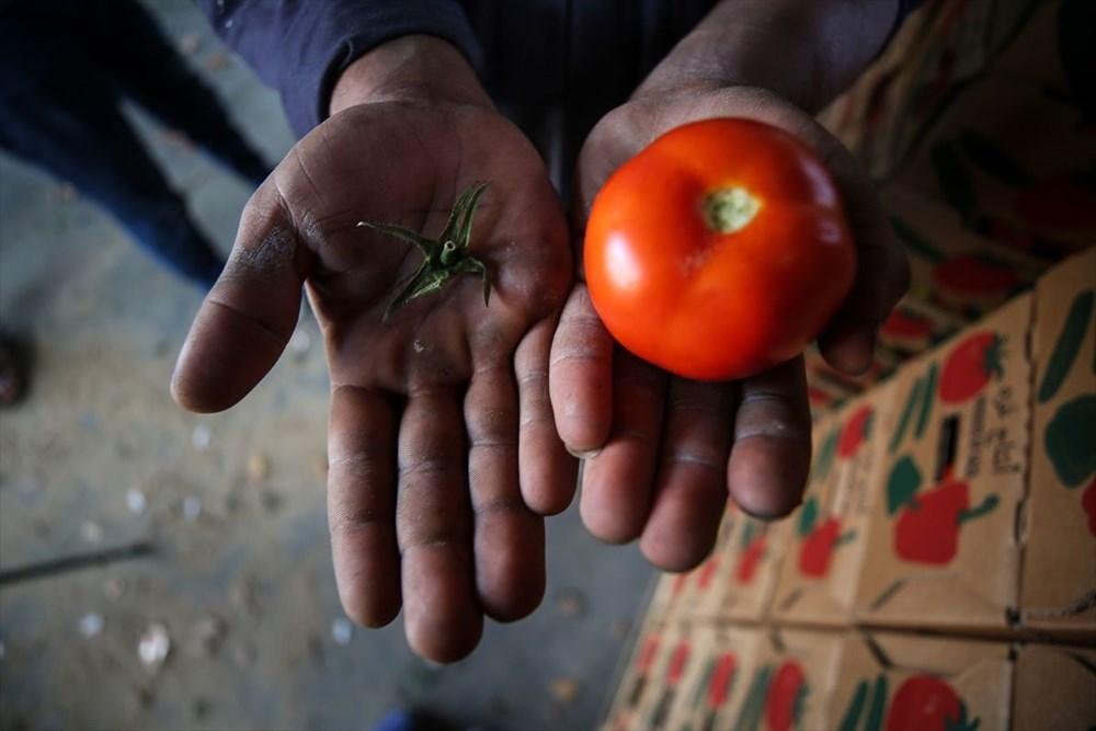 İsrail'in kararına tepki: Domates sapını tehdit gördüler - 7