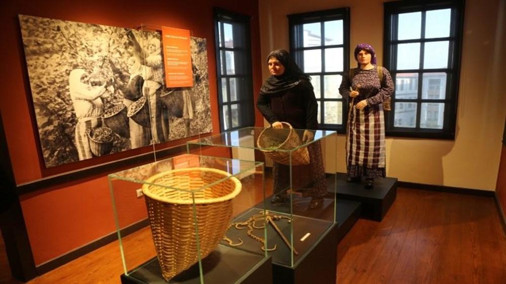 Fındığın serüveni artık bu müzede anlatılacak: Ordu Fındığın Öyküsü Müzesi | NTV