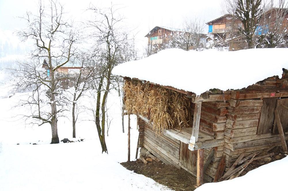 Artvin'deki 2 bin rakımlı Maden Köyü'nde kışı böyle geçiriyorlar - 9