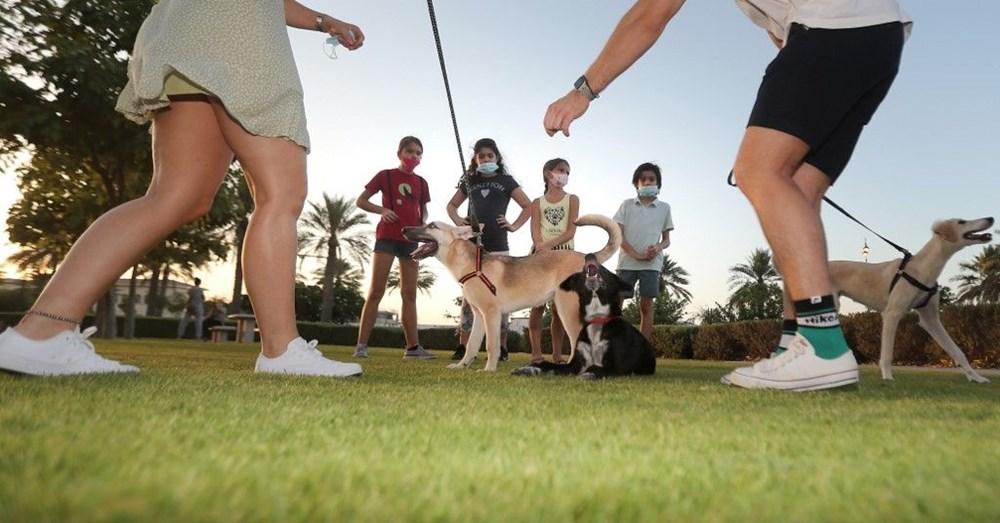 Köpek adları da corona virüsten etkilendi - 3