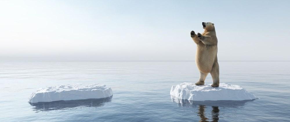 Bilim insanlarından 2040 uyarısı: Kuzey Kutbu deniz buzu iki kat hızlı eriyor - 6