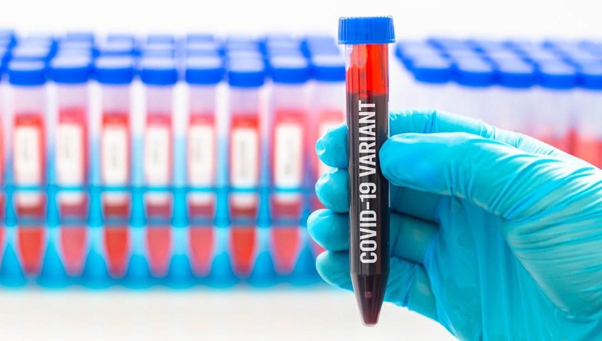Gerçek veriler açıklandı: BioNTech / Pfizer aşısı Güney Afrika ve İngiliz varyantlarına karşı koruma sağlamayabilir