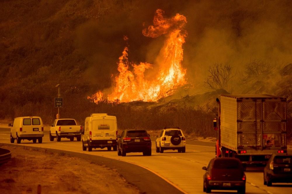 ABD'nin California eyaletindeki orman yangını | NTV