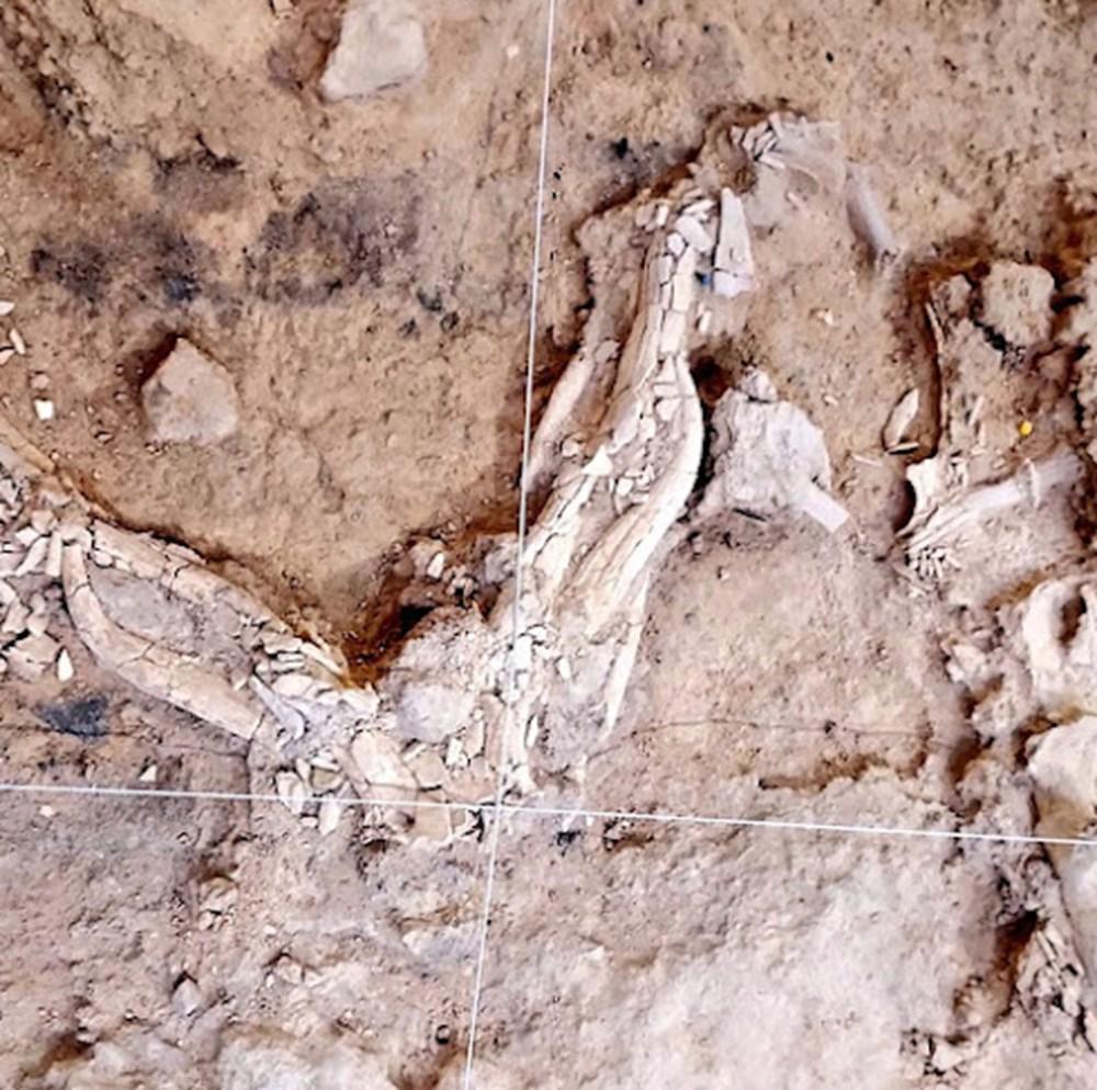İspanya'da Neandertallere ait 60 bin yıllık kalıntılar bulundu | NTV