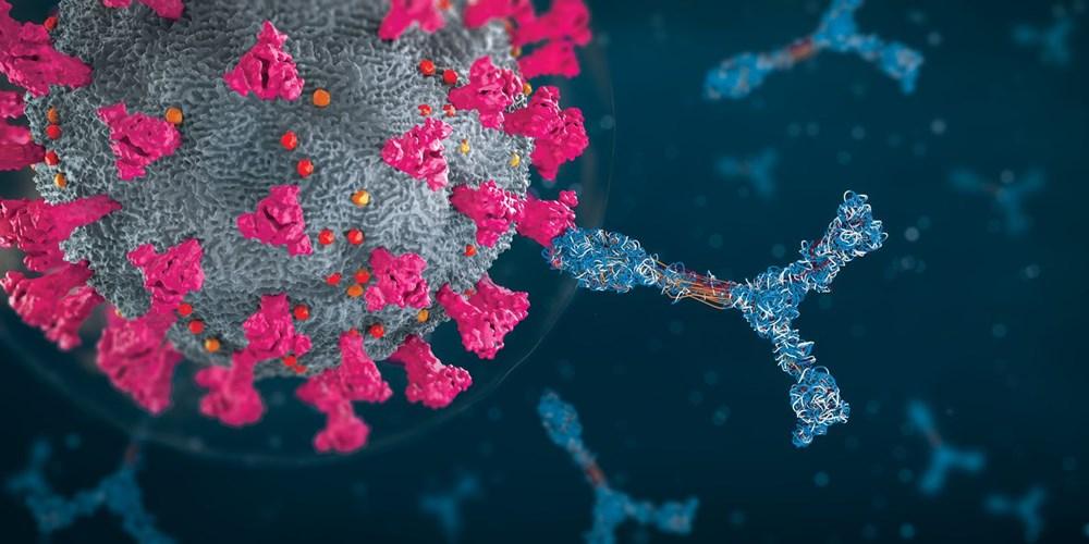 Anne sütünde Covid-19'a karşı antikorlar 10 ay boyunca salgılanmaya devam ediyor - 5