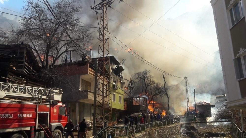 Artvin'deki yangın kontrol altında - 2