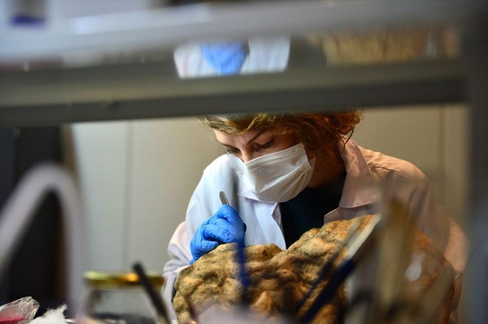 Troya Müzesi'nin perdeleri restorasyon ve konservasyon çalışmaları için ziyaretçilere açılıyor - 5