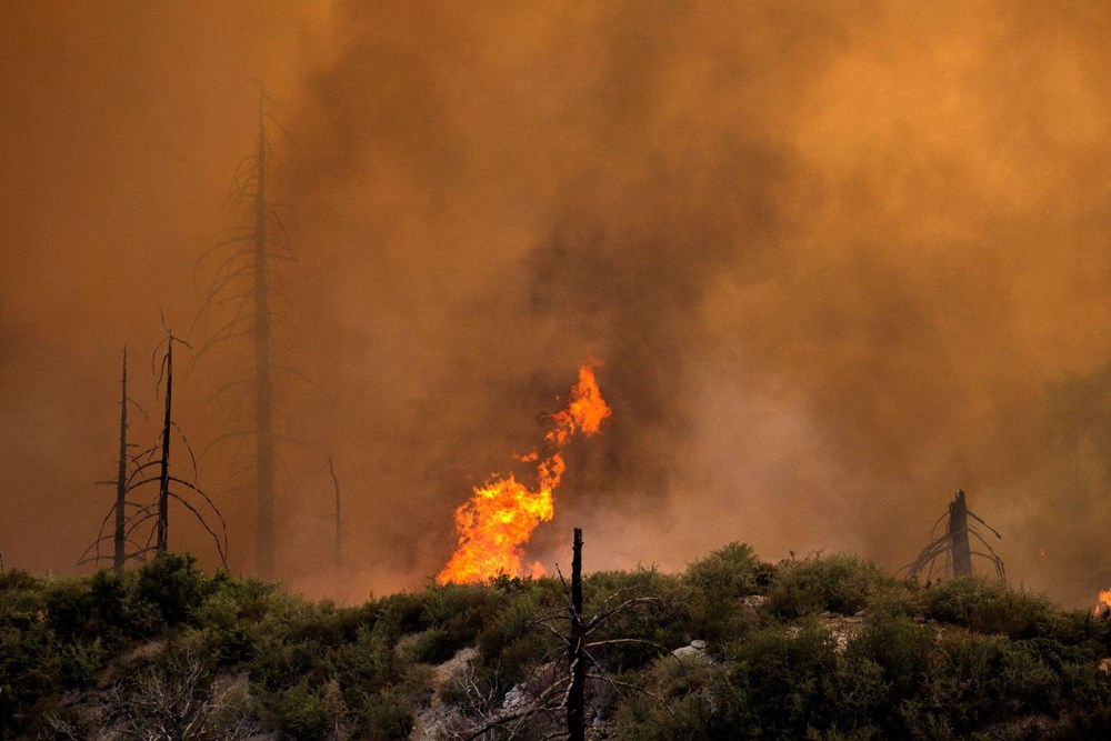 California'daki yangınlarda rekor - 5