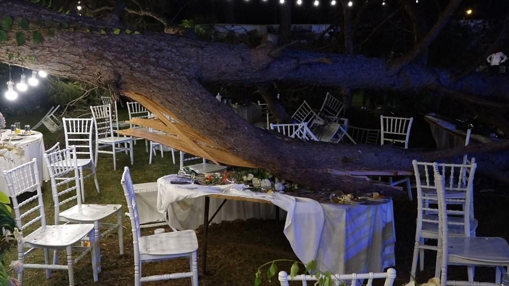 Antalya'da kır düğününde'ağaç' devrildi: 1 ölü - 7