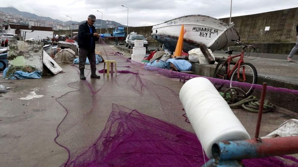Karadeniz'de hamsi bolluğu: Fiyatlar düştü - 2