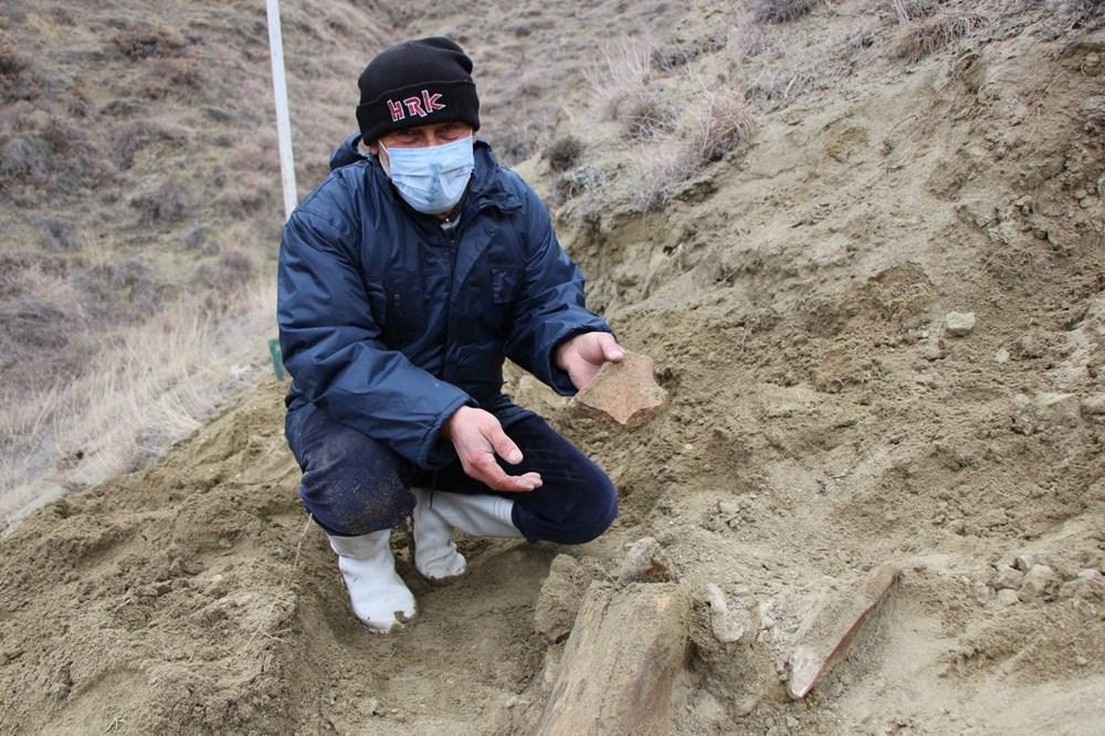 Amasya'da bulunan cisimler için mamut fosili heyecanı - 4