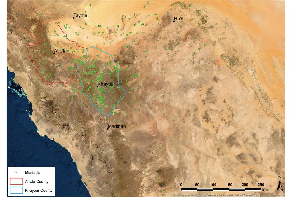 Suudi Arabistan'daki 7 bin yıllık yapılar: Stonehenge'den daha eski - 2