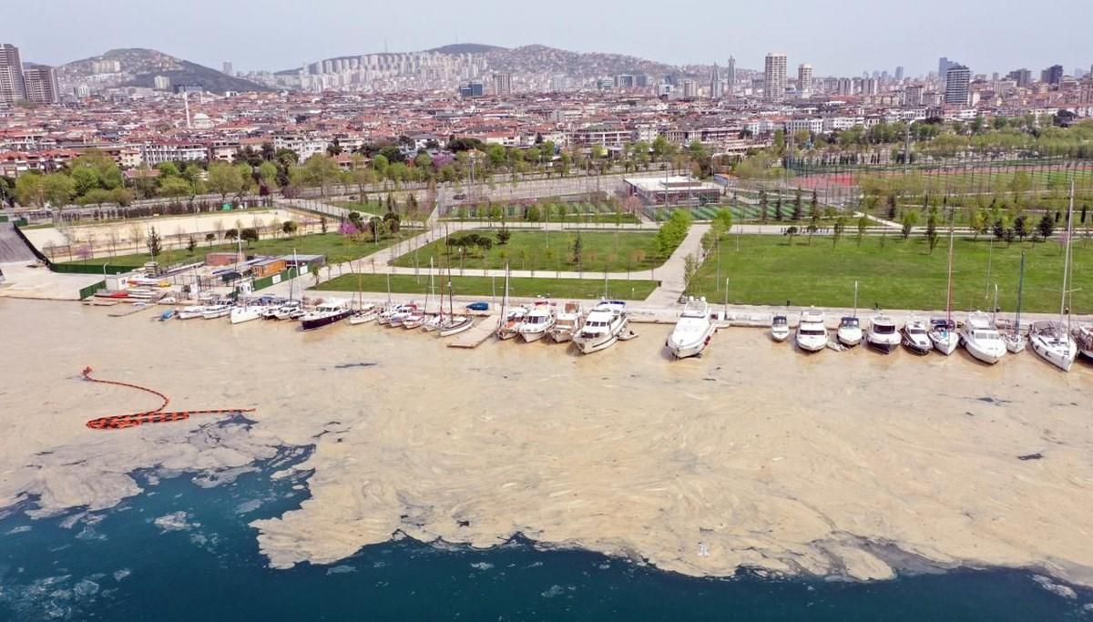 Türkiye'nin geleceğini tehdit eden deniz salyası ABD basınının gündeminde