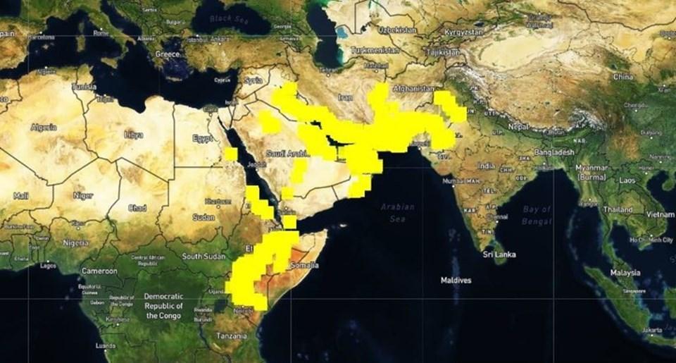 1 Mart - 10 Mayıs tarihlerinde çekirge istilalarının yaşandığı bölgeler