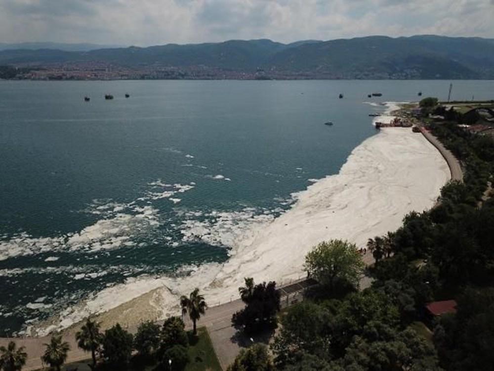 İzmit Körfezi yeniden deniz salyası ile kaplandı: Martı salyaya saplandı - 2