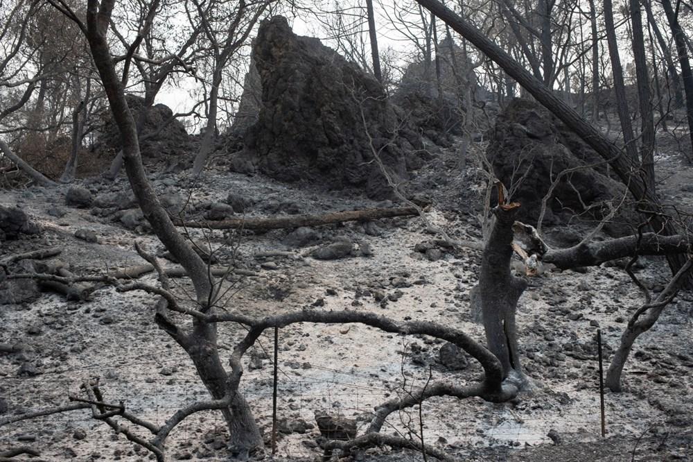 California'da 8 bin kilometrekare alan yandı, rekor kırıldı - 14