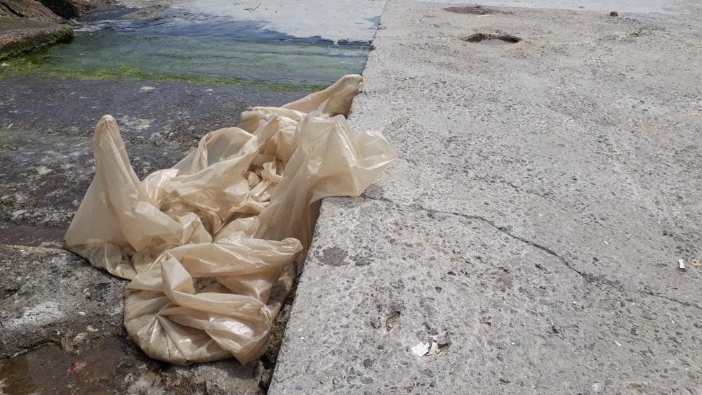 İstanbul'un sahilleri müsilajla doldu: 95 yıldır böyle bir şey görmedim - 2