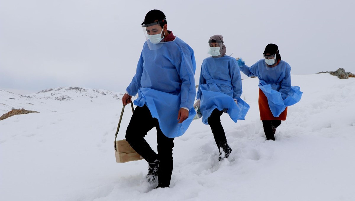 Challenging vaccine study in the coldest place