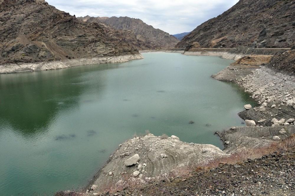 Baraj gölündeki balıkların kümeler halinde durmasının nedeni ortaya çıktı - 6