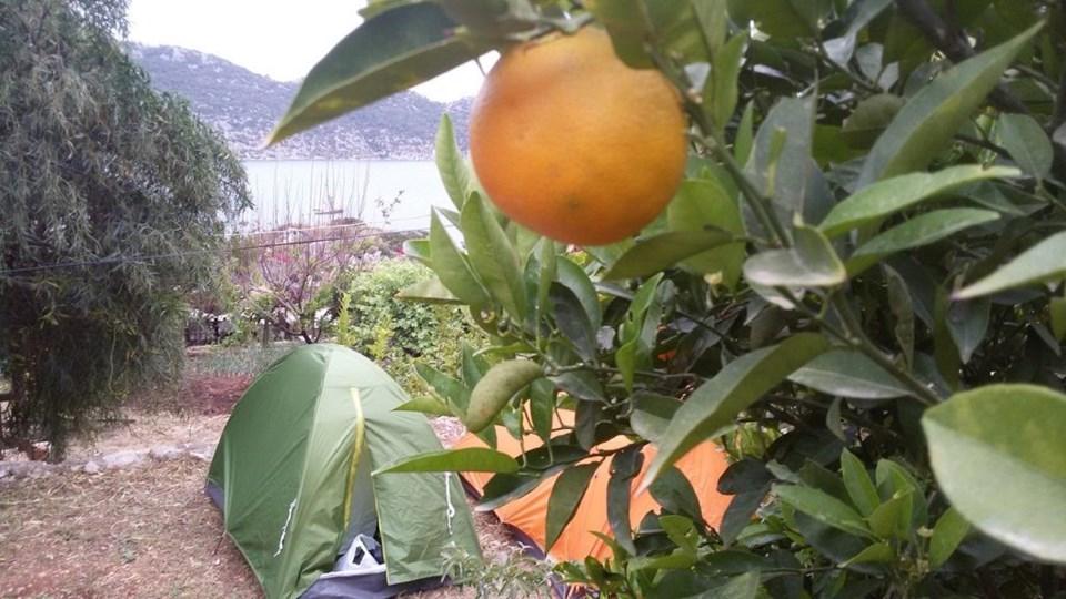 Doğa ile iç içe mola aynı zamanda organik beslenme şansı da veriyor.