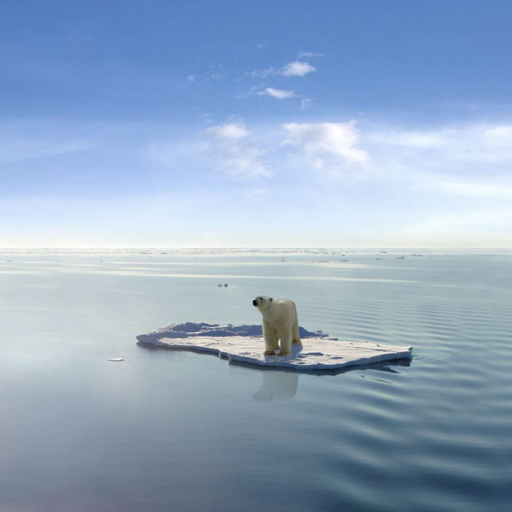 Kuzey Kutbu alarm veriyor: Arktik Buz Denizi zamanı gelmesine rağmen hala donmadı - 9