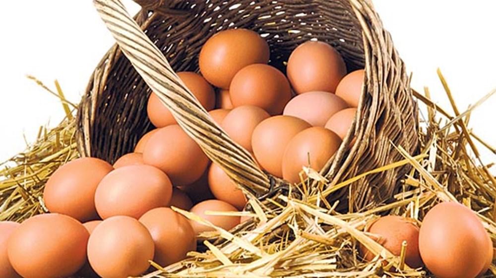 Bağışıklık sistemini güçlendiren besinler (50 sağlıklı besin) - 47