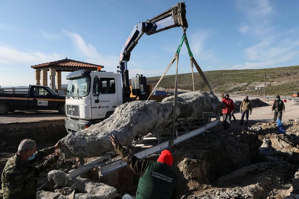 Yunanistan'da 20 milyon yıllık taşlaşmış ağaç bulundu - 8