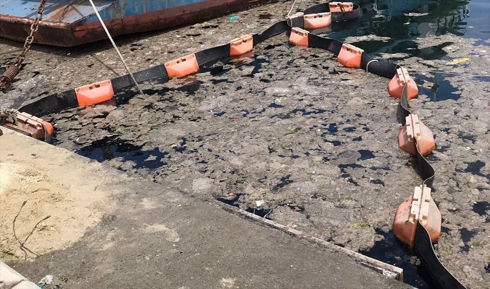 İstanbul Üniversitesi, müsilajı deniz bakterisiyle temizlemeyi başardı - 1