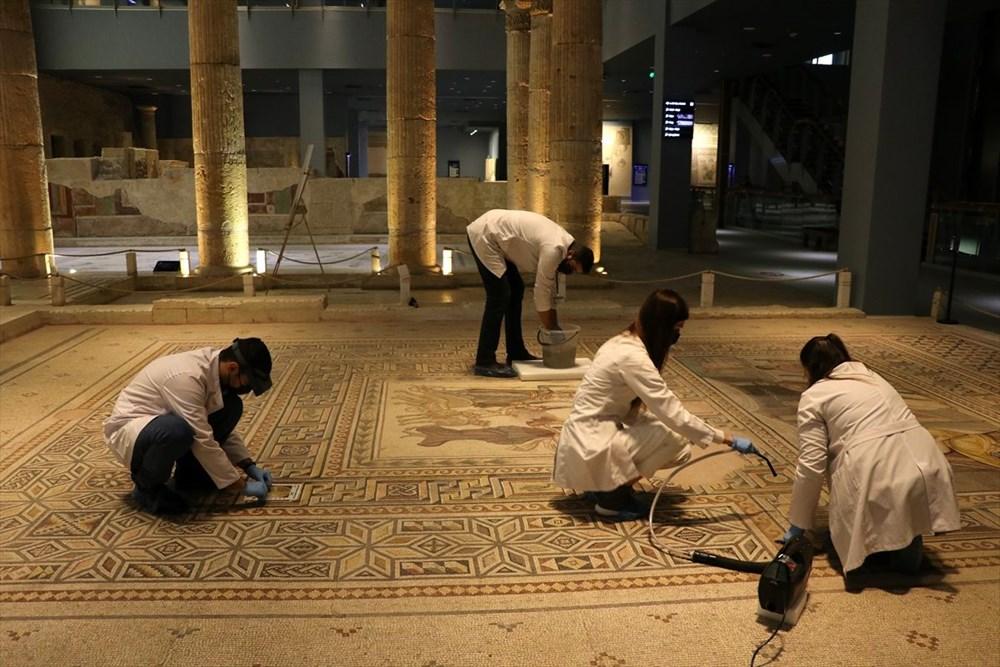 Zeugma Mozaik Müzesi'ndeki eserler, cerrah hassasiyetiyle temizlenerek geleceğe aktarılıyor - 2