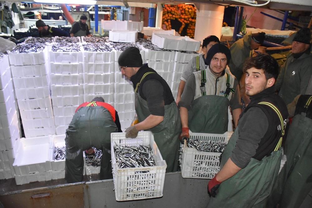 Balıkçılardan hamsi avının serbest olduğu İğneada'ya akın - 5