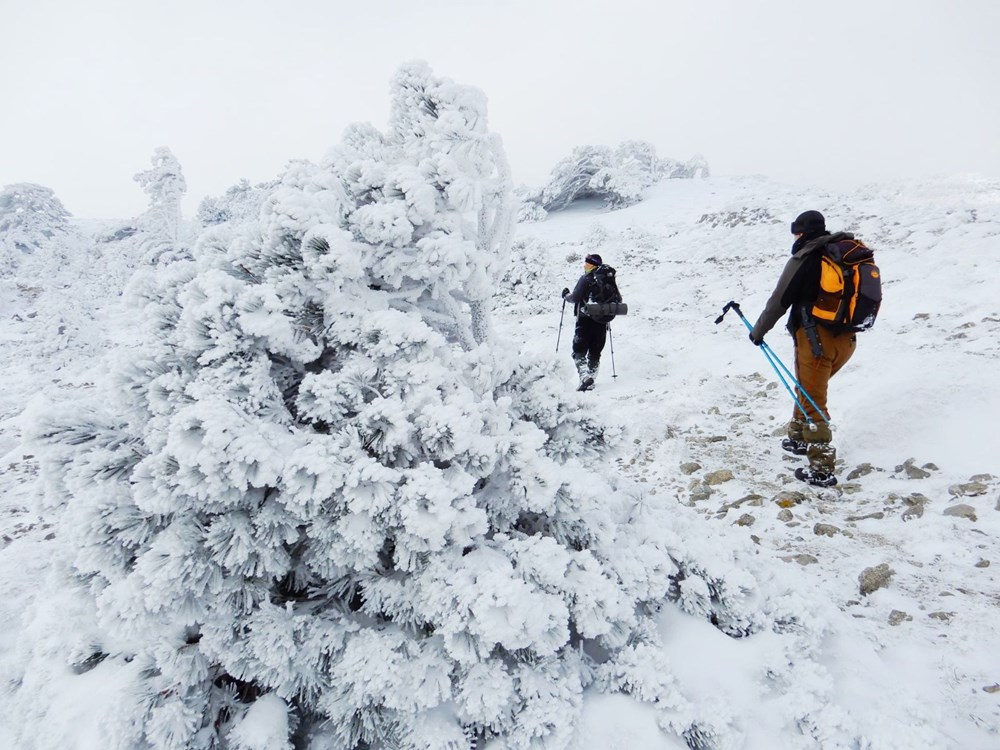 Mount Ida turned white: Nature lovers went for a walk - 3