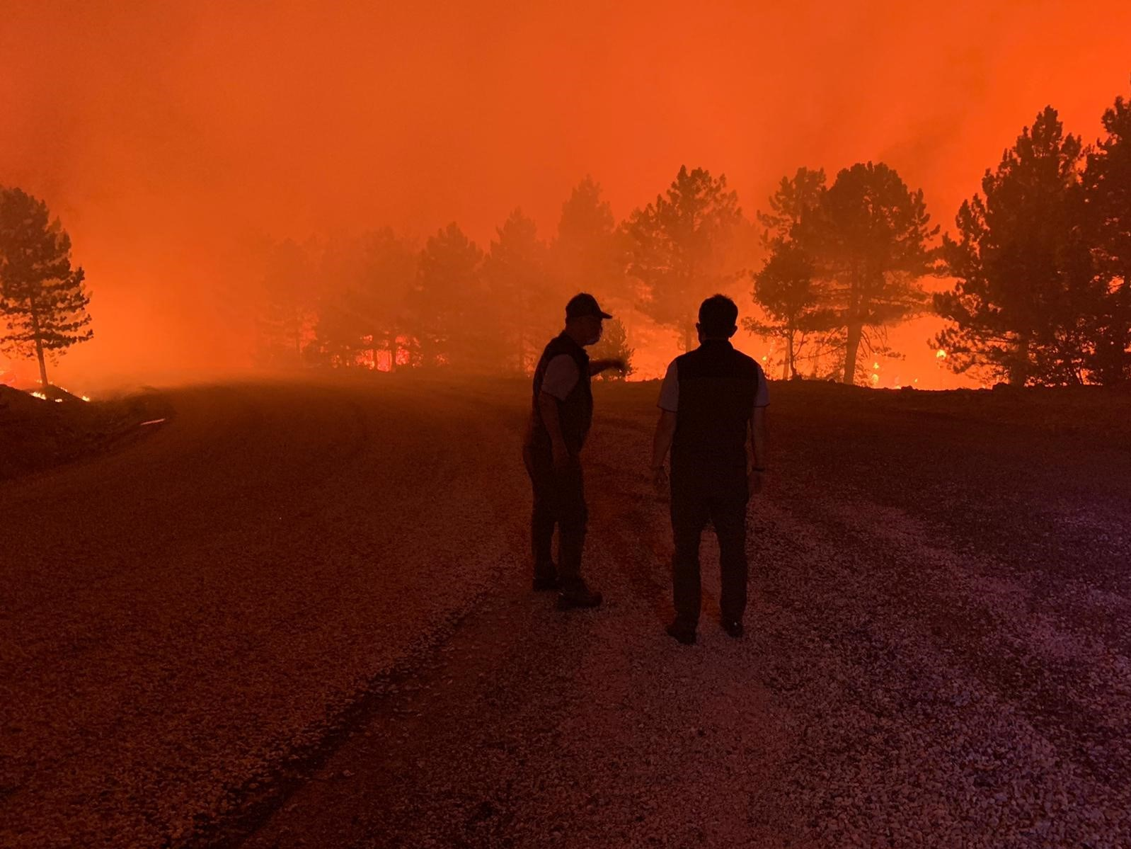 Tarım ve Orman Bakanı Bekir Pakdemirli, Denizli'deki orman yangını bölgesinde