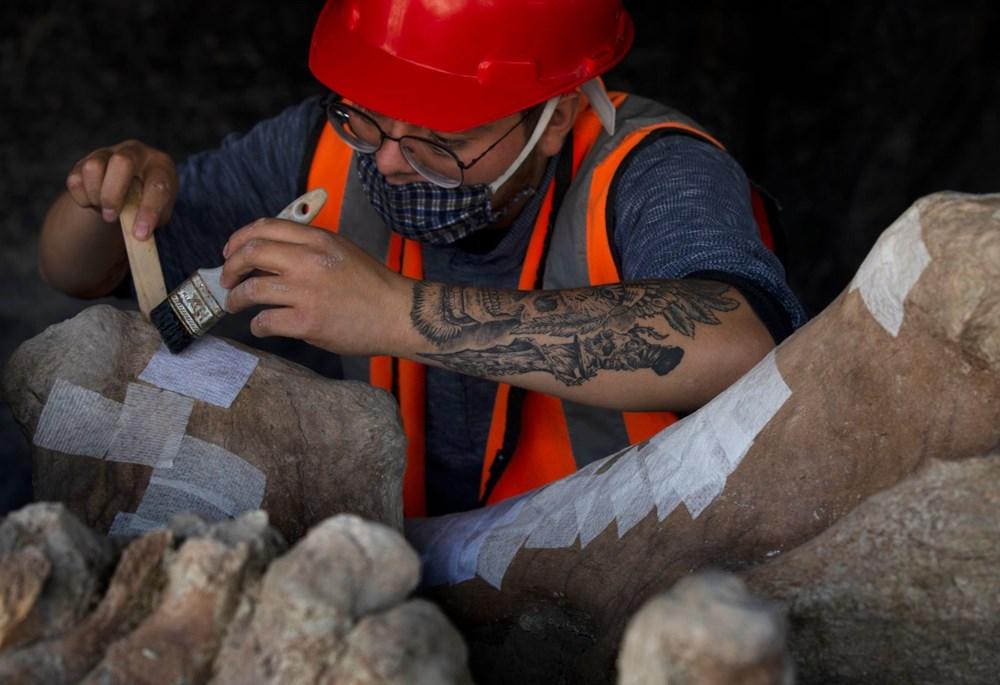 Meksika'daki sit alanında bulunan mamut fosillerinin sayısı 200'e yükseldi - 5