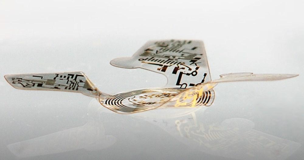 Dünyanın en küçük ve ilk uçan mikroçipi üretildi: Covid-19 ve diğer hastalıkları tespit edecek - 4