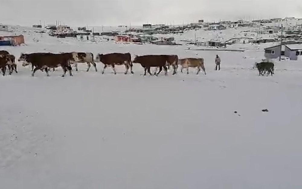 Kar etkili oldu: Yaylacıların dönüş hazırlıkları erken başladı - 10