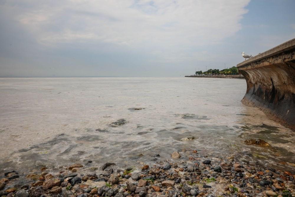 İstanbul'un sahilleri müsilajla doldu: 95 yıldır böyle bir şey görmedim - 15