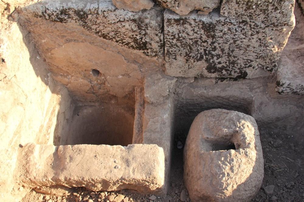 Adıyaman'daki Perre Antik Kent'teki kazılarda 9 adet üzüm işliği bulundu - 2